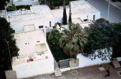 Hidden Architecture: Courtyard Houses Agadir, Architecture Courtyard, Courtyard House, Building, Plants, Houses, Interior, Homes, Indoor