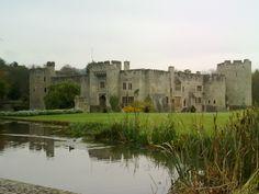 Allington Castle-home of my Wyatt line.