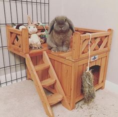 The Best Selling Wooden Fort for Pet Bunnies & Rabbits is at Bunny Supply Co! Featuring an adorable Bunny Cages, Rabbit Cages, House Rabbit, Rabbit Toys, Pet Rabbit, Indoor Rabbit House, Rabbit Hutch Indoor, Rabbit Pen, Indoor Rabbit Cage