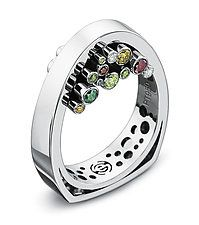 Platinum & Stone Ring by Erik Stewart