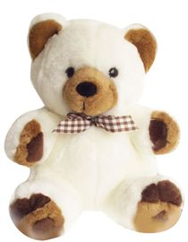 A Small cute teddy bear 6 inch.. http://flowershop18.in/flowers-to-delhi.aspx