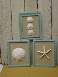 beach cottage chic framed shells