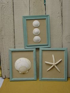 beach cottage chic framed shells