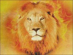 lion of judah   Yeshua-Lion-of-Judah.jpg