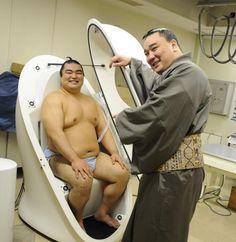 Sumo Wrestler Pod