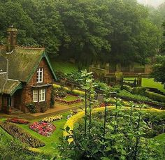 Beautiful Cottage