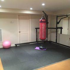 garage gym setup with mma cage  garage gym small home