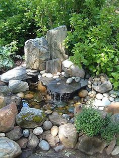 Water Garden! I love the looks of this! Looks more natural:)