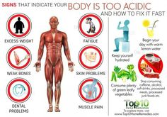 that Indicate Your Body is Too Acidic and How to Fix it Fast Signs That Indicate Your Body is Too Acidic and How to Fix it.Signs That Indicate Your Body is Too Acidic and How to Fix it. Health Diet, Health And Nutrition, Health And Wellness, Health Care, Health Facts, Alkalize Your Body, Detox Your Body, Acidic Body Symptoms, Diabetes