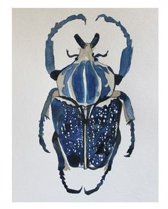 Indigo Beetle Original Watercolor Art by CreatedByStorm on Etsy