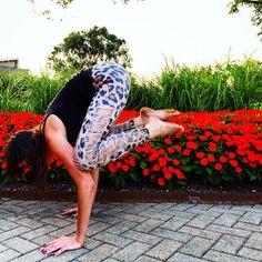 Bakasana, Crow Pose, Yoga, Columbus, Ohio