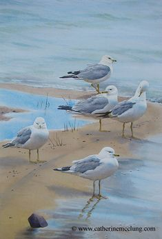 Catherine McClung watercolor - Sidline Sandbar