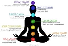 Keeping-The-Seven-Chakras-Healthy.png (1000×679)