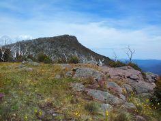 Mount Lovicks, Alpine National Park, Victoria, Australia. Dec 2012. Photo taken using a Samsung Galaxy S2. (c) Lucas Pardo.