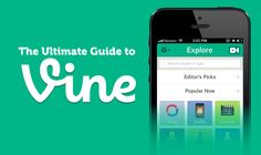 The Ultimate Guide to Vine