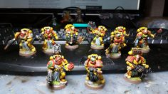 Imperial Fist Sternguard