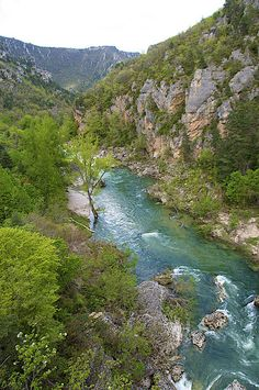The Cevennes National Park in the Tarn Gorge, France