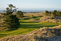 """The newly opened Preserve """"short course"""" at Bandon Dunes...played it before it opened...wow!"""