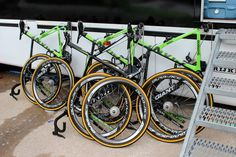 Maarten Wynants' Giant Propel SL0 - Giant had roughly a week to give the team's bikes a new lick of paint following Belkin's arrival as headline sponsor