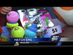 Toys for Every Budget on NBC Cincinnati - The Toy Insider