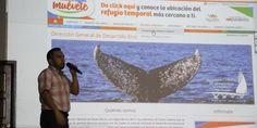 Presentan 'Vallarta Creativo' a creadores y artistas de Puerto Vallarta