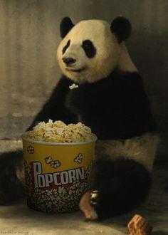 #panda ffffound.com