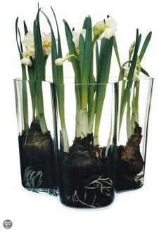 Alvar Aalto vase im glas aalto savoy vase small