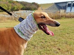 Greyhound snood Greyhound cowl greyhound by GreyhoundKnits on Etsy