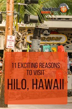 11 Exciting Reasons to Visit Hilo Hawaii Hawaii 2017, Kona Hawaii, Hawaii Life, Kailua Kona, Blue Hawaii, Hawaii Honeymoon, Hawaii Vacation, Hawaii Travel, Hawaii Trips