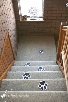 Paw prints leading to the party!!! Great idea outside on the path to the door!