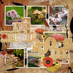 MUSHROOMS: I just love seeing all these great mushrooms pop up each autumn.  I made this page with Fall Equinox from Jen Maddocks, available at Digital Scrapbooking Studio here: https://www.digitalscrapbookingstudio.com/jen-maddocks-designs/ Also used: My Favorite & My Best {Story} 6 and Mans World