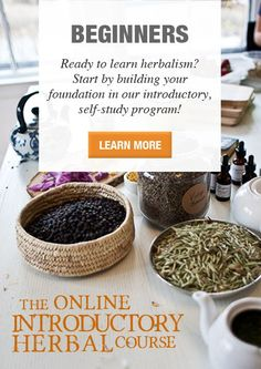 Intro course to herbalism