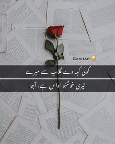 1 Line Quotes, Rose Quotes, Love Quotes Poetry, Love Poetry Urdu, Flower Quotes, Heart Quotes, Poetry Text, Poetry Lines, Poetry Books