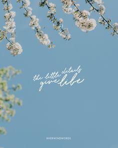 #herwindwords #faith #littledetails