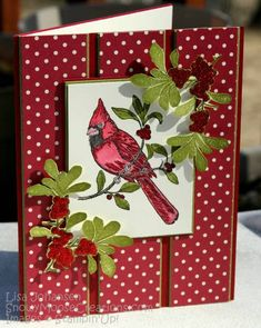 Polka Dots for a Cardinal Christmas by Alcojo94 - Cards and Paper Crafts at Splitcoaststampers