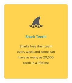 Friday fun fact! Natalie Lenser, DDS | #Modesto | #CA | www.toothfairyteam.com
