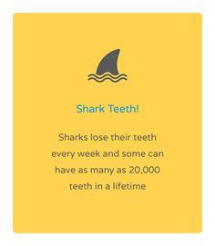 Friday fun fact! Natalie Lenser, DDS   #Modesto   #CA   www.toothfairyteam.com