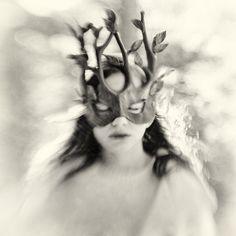 The Trees Whisper My Name by Carolyn Hampton