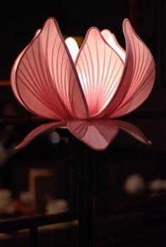 한지 한지 b&q colorfill white - White Things Garden Lanterns, Paper Lanterns, Light Decorations, Flower Decorations, Nylon Flowers, Flower Lights, Light Crafts, Chinese Lanterns, Stained Glass Patterns