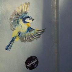 birds and macarons in Kensington