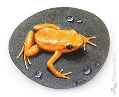 Pintada a mano única rana dorada descansando sobre una roca | Pequeño Trompe l
