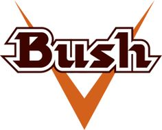Image result for bush brouwerij logo