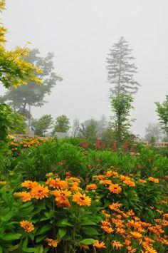Alfond Children's Garden,  Boothbay Maine