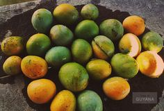 [Oh, I remember those Buxton Spice mangoes. Sold them once under a cashew tree on a busy main road in Linden, Guyana. My grandmother made me do it. (FahmeenaOdetta)] Freshly picked and washed Buxton Spice mangoes! (Photo: O. Cashew Tree, Roots, Mango, Spices, Lime, Island, Fruit, Paradise, Memories