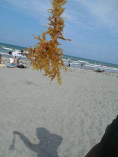 The Last Summer www.imperfectlysoulsgenius.com #Blog #ISG #Summer #Real #Life