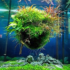 Парящий шар в аквариуме