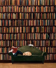 In library / En la Biblioteca need to add another cat and dog to this pic to make it perfect I Love Books, Books To Read, My Books, Reading Art, World Of Books, Book Nooks, Library Books, Dream Library, Book Nerd