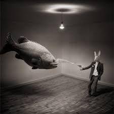 Resultado de imagen para gatos surrealista