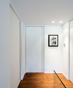 Custom-made modern frameless interior doors