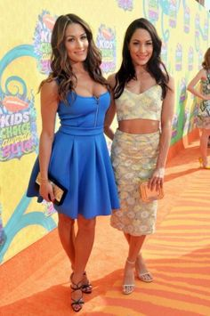 WWE Divas Nikki and Brie Bella, the Bella Twins